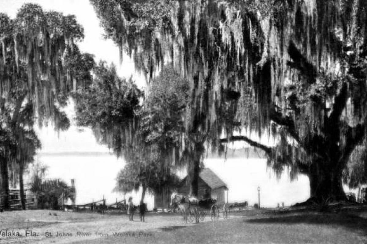 Welaka Park, 1896